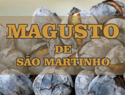 Magusto de São Martinho 2019